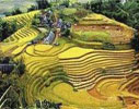 viet nam holiday packages