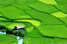 Photo for package tours Hanoi to Mai Chau