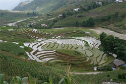 Sapa Vietnam Tour from Bangkok